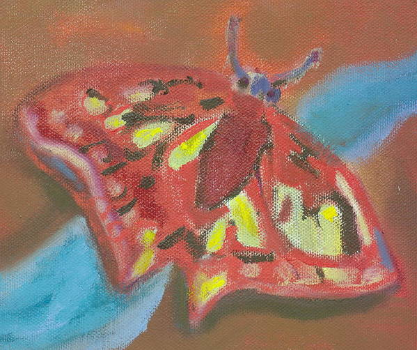 Butterfly Red Fantasy Hillaryart Art Print featuring the painting Butterfly by Hillary McAllister