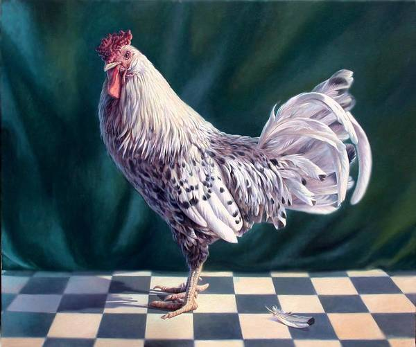 Chicken Art Print featuring the painting Hamburger Rooster by Hans Droog