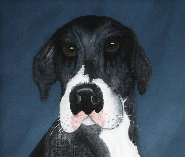 Great Danes Art Print featuring the painting Kane by Rebecca Fitchett