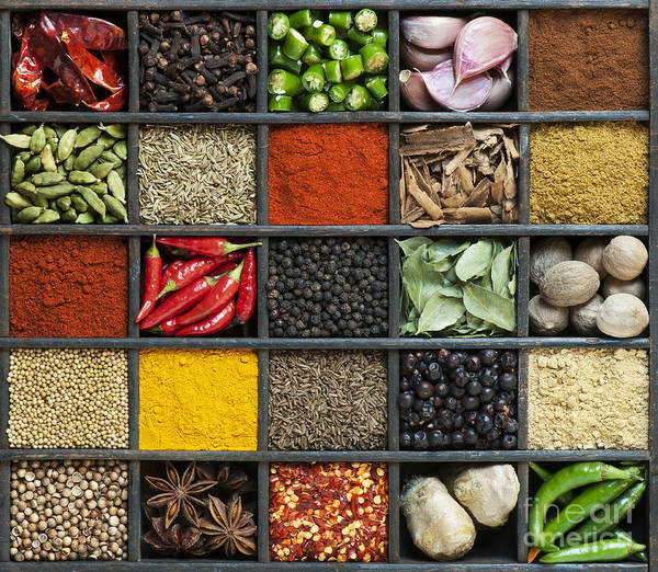 Indian Art Print featuring the photograph Indian Spice Grid by Tim Gainey