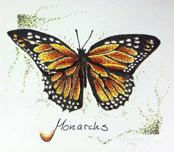 Monarch Art Print featuring the drawing Monarchs - Butterfly by Katharina Filus