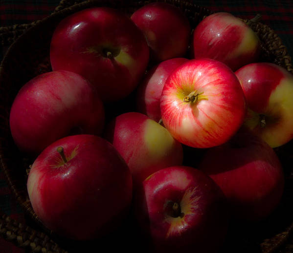 Apple Art Print featuring the photograph One A Day by Jean Noren