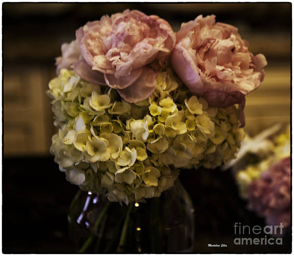 Flowers Art Print featuring the photograph Vase Of Flowers by Madeline Ellis