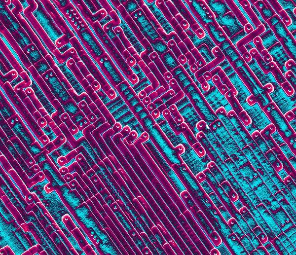 Integrated Circuits Art Print featuring the photograph Microchip Circuitry, Sem by Power And Syred