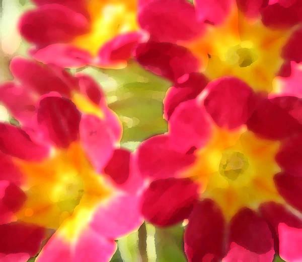 Flowers Art Print featuring the digital art Sunburst by Jim Beam