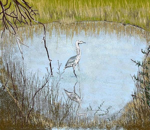Bird Art Print featuring the digital art Great Blue by Carole Boyd
