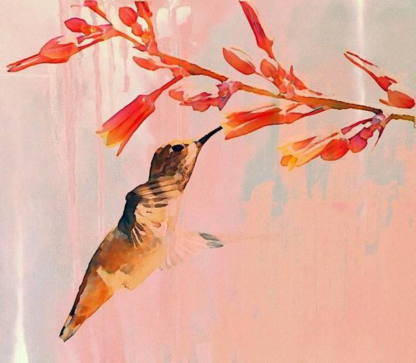Hummingbird Art Print featuring the photograph Hummer Art by Fraida Gutovich