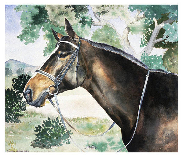 Portrait Art Print featuring the painting Millie by Eileen Hale