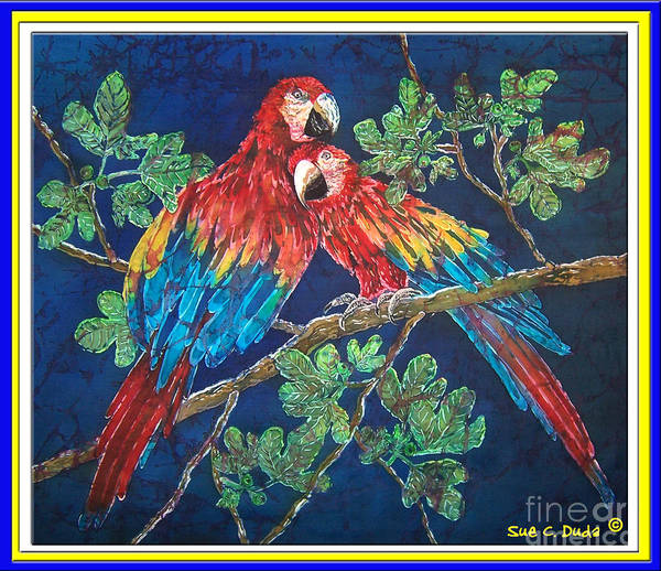 Parrots Art Print featuring the painting Out On A Limb- Macaws Parrots - Bordered by Sue Duda