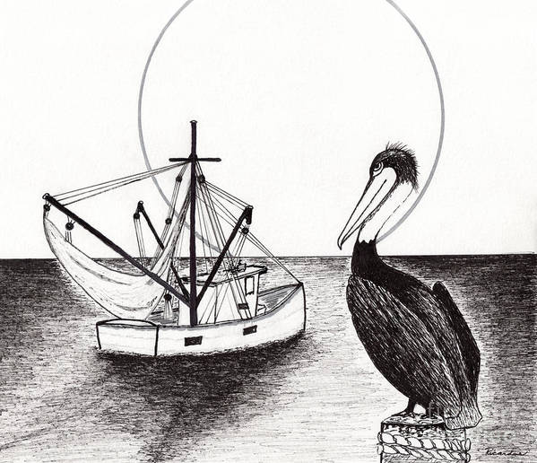 Pelican Art Print featuring the drawing Pelican Fishing Paradise C1 by Ricardos Creations