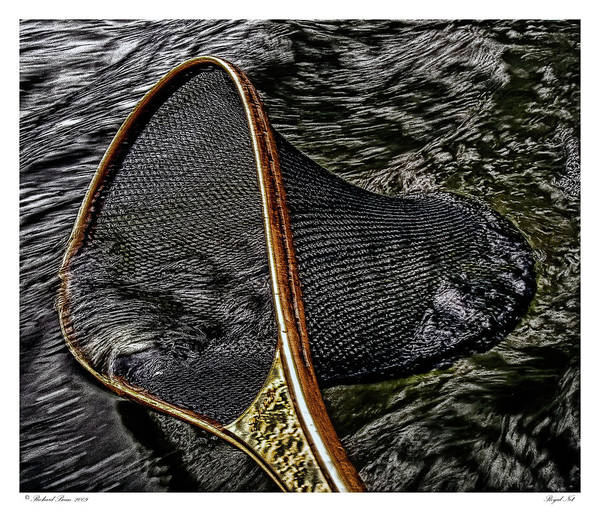 Fishing Art Print featuring the photograph Royal Net by Richard Bean