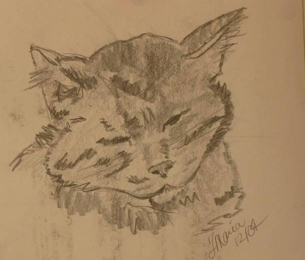 Kitty Art Print featuring the drawing Sleepy Kitty by Theresa Romano