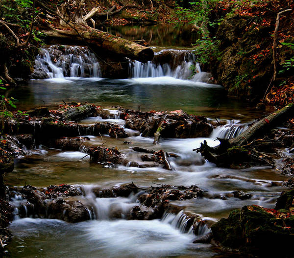 Water Art Print featuring the photograph Warm Springs by Karen Harrison