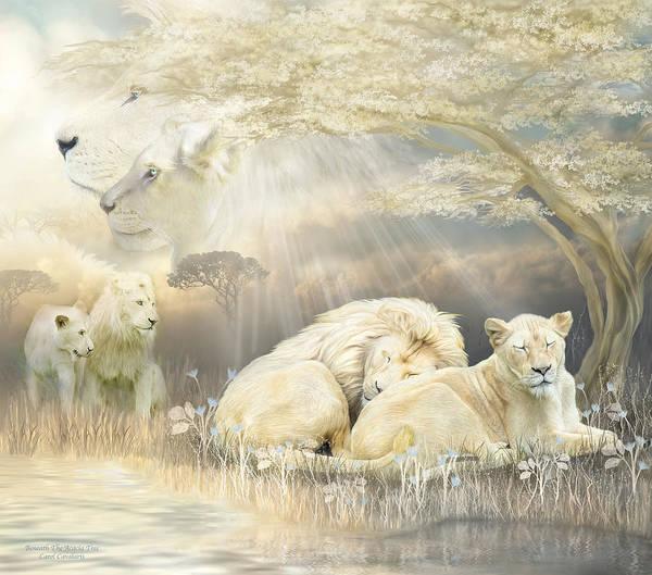 Lion Art Print featuring the mixed media Beneath The Acacia Tree by Carol Cavalaris