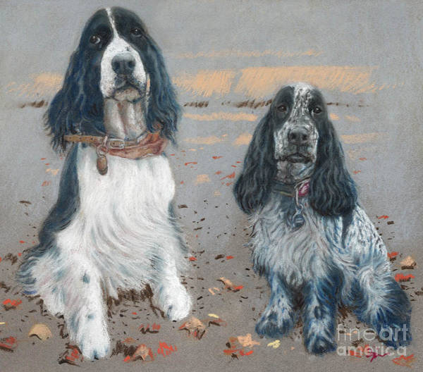 Dogs Art Print featuring the pastel Cocker Spaniels by Suzie Majikol Maier