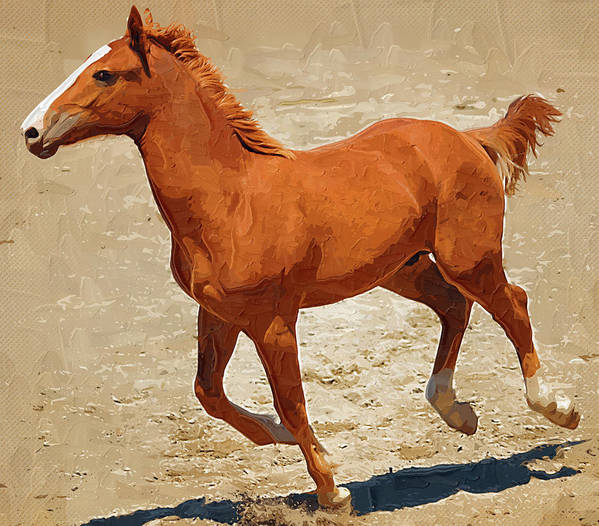 Horse Art Print featuring the painting Colt Running by Clarence Alford