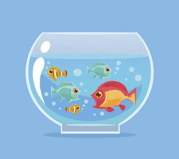 Aquarium Fish Vector Flat Cartoon Illustration Art Print