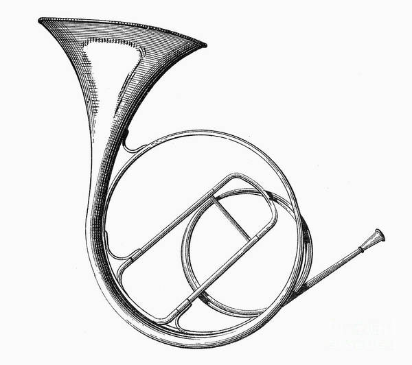 19th Century Art Print featuring the photograph French Horn by Granger