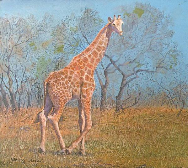 Giraffe Art Print featuring the painting Giraffe - Safari - Summer 2008 by Wendy Hill