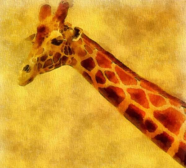 Giraffe Portrait Art Print featuring the painting Giraffe Painting by Dan Sproul