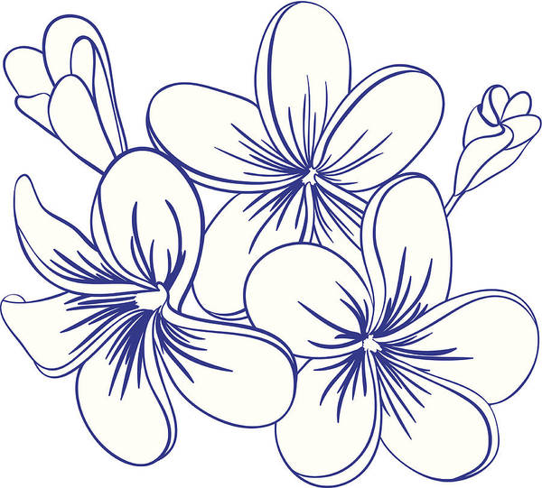 1657d155bf29e Home Decor Art Print featuring the drawing Beautiful Hand Drawn Plumeria  Flowers by LizaLutik