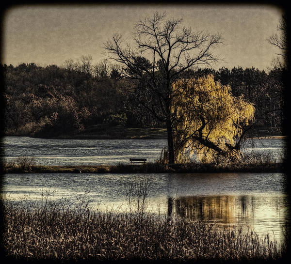 Lake Art Print featuring the photograph A Place To Think by Thomas Young