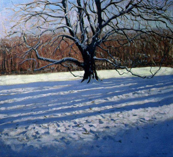 Landscape Art Print featuring the painting Large Tree by Andrew Macara