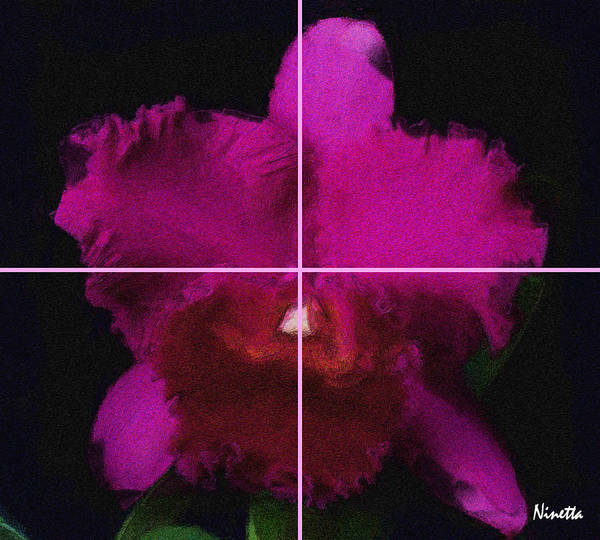 Flower In Poster Art Print featuring the digital art 3. Escarlata  Artwork In Poster by Andrea N Hernandez