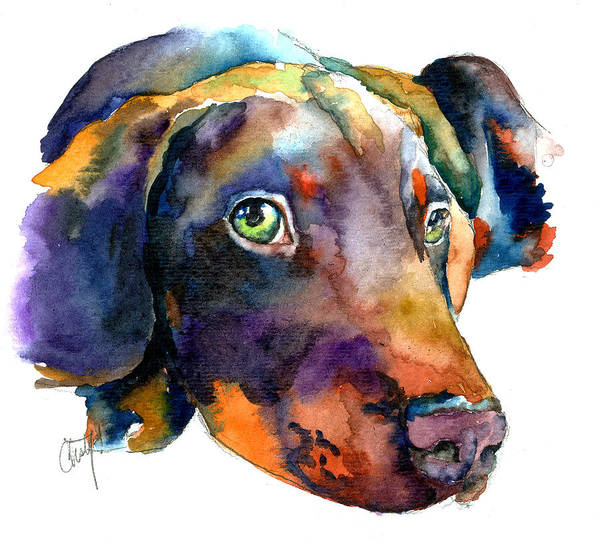 Doberman Art Print featuring the painting Doberman Watercolor by Christy Freeman