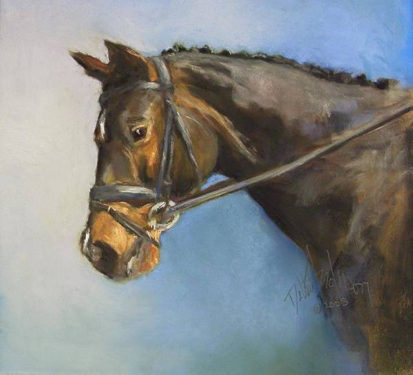 Horse Art Print featuring the painting Showhorse by Debbie Anderson