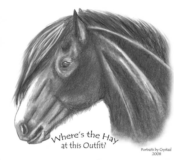 Clydesdale Art Print featuring the drawing Clydesdale by Crystal Suppes