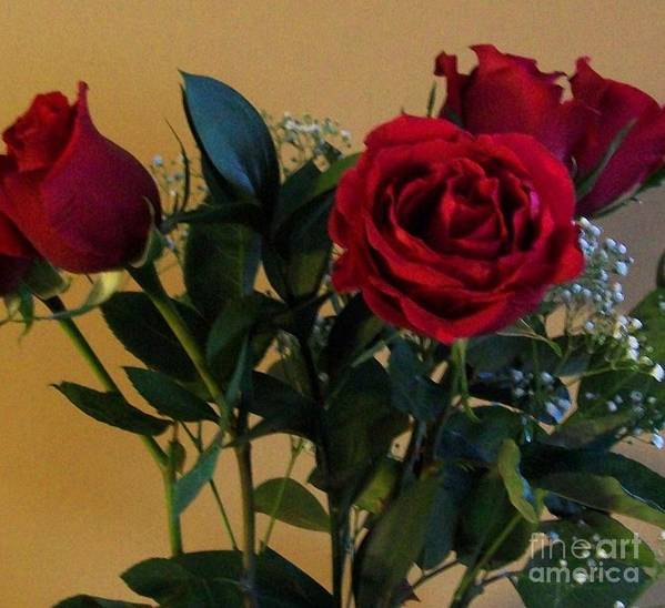 Red Roses Art Print featuring the photograph Roses For Valentines Day by Marsha Heiken