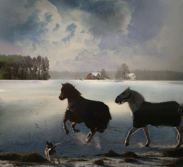 Horses Art Print featuring the digital art The Chase by Henriette Tuer lund