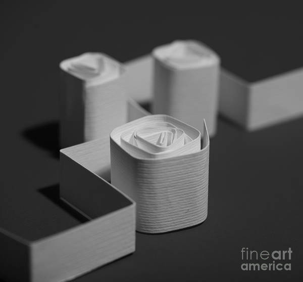 Paper Art Print featuring the photograph Towers by Gabriela Insuratelu