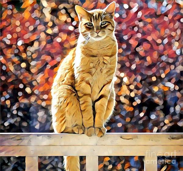 Animal Art Print featuring the photograph Orange Tabby On Porch Rail by Tarisa Smith