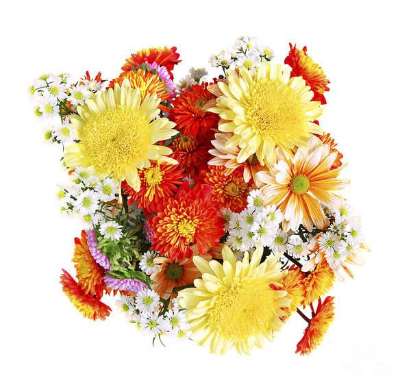 Flower Art Print featuring the photograph Flower Bouquet by Elena Elisseeva