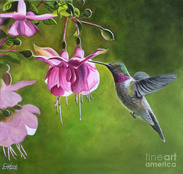 Hummingbird Art Print featuring the painting Hummingbird And Fuschia by Debbie Hart