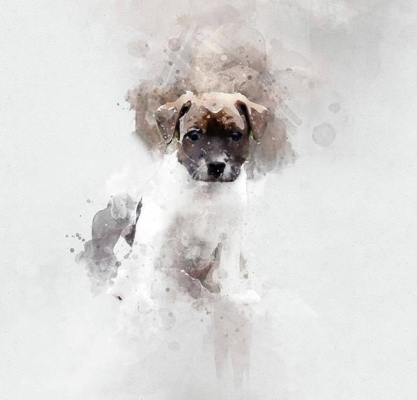 Danish Swedish Farmdog Puppy Dog Danish Swedish Farmdog Dog Puppy Art Print featuring the digital art Danish Swedish Farmdog by Marika Lindelof