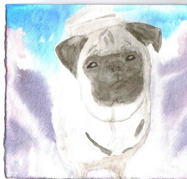Pug Dog Watercolor Art Print featuring the painting Pug by Warren Thompson