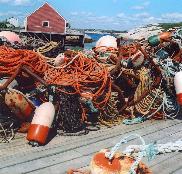 Peggy's Cove Art Print featuring the photograph Ropes by Andrea Simon
