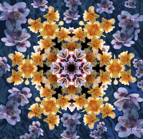 Mandala Art Print featuring the digital art Mandala Alstro by Nancy Griswold