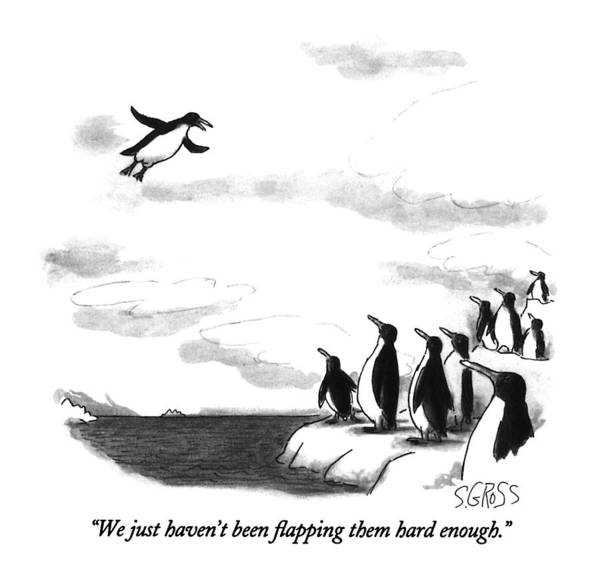One Penguin Flying To A Group Of Penguins Who Are Perched On An Iceberg. Animals Art Print featuring the drawing We Just Haven't Been Flapping Them Hard Enough by Sam Gross