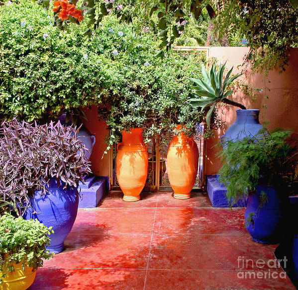 Garden Art Print featuring the photograph Mediterranean Garden by Susan Wall