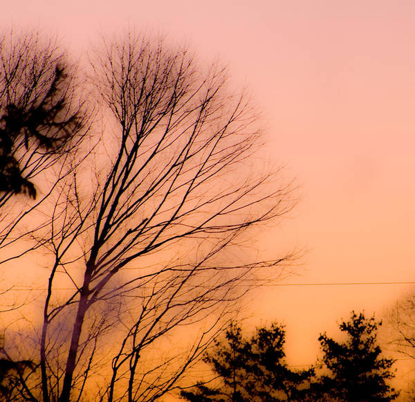 Sunrise Art Print featuring the photograph Winter Sunrise by Laurie Breton