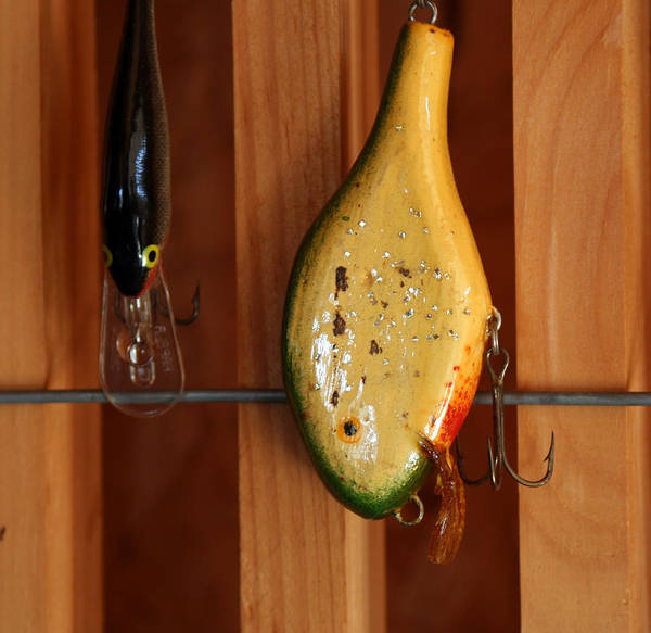 Fishing Art Print featuring the photograph Antique Lure by Linda A Waterhouse