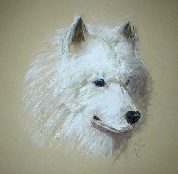 Dog Art Print featuring the drawing Arctic Serenity by Cori Solomon