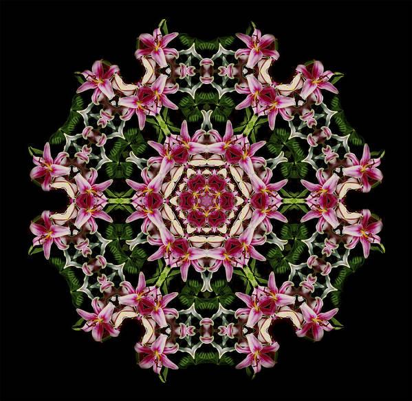 Mandala Art Print featuring the photograph Mandala Monadala Lisa by Nancy Griswold