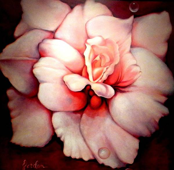 Blooms.large Rose Art Print featuring the painting Sheer Bliss by Jordana Sands