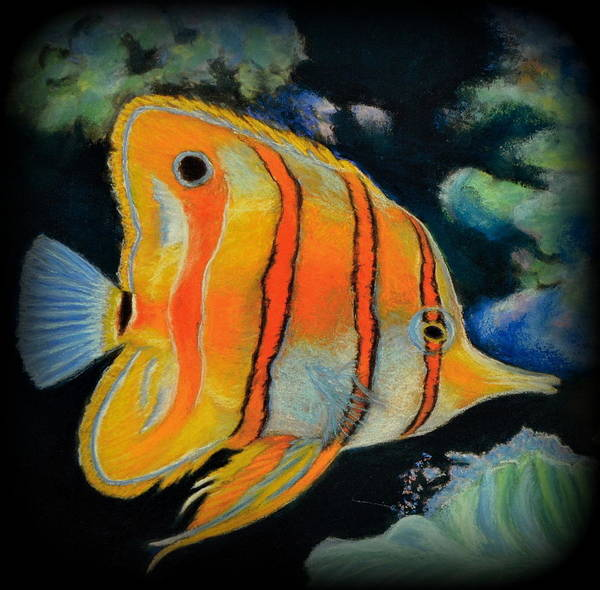 Fish Art Print featuring the pastel Butterfly Fish by Antonia Citrino