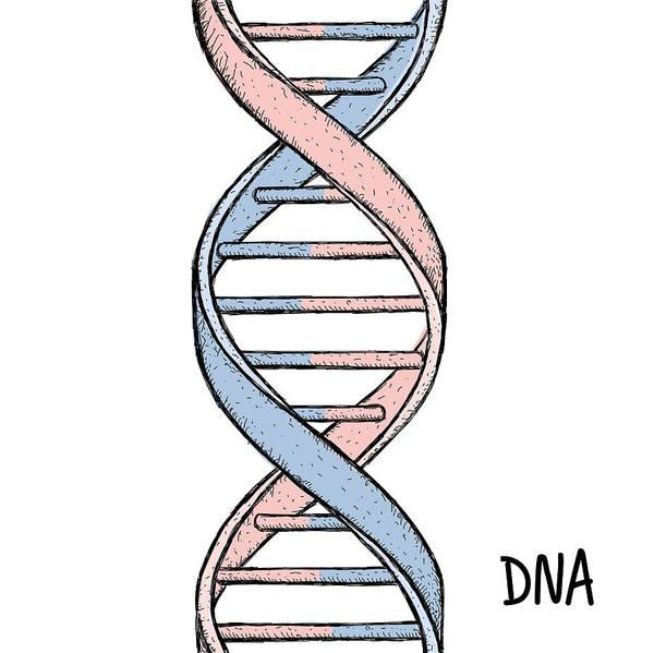 Gold Dna  Dna Symbol  Dna Helix Symbol  Gene Icon  Art Print